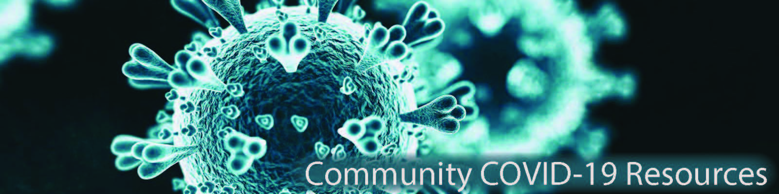 Community COVID-19 Resources Header Image